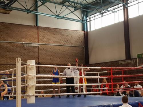 Gala boksu
